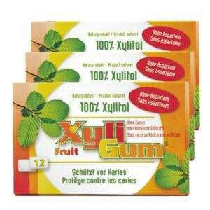 Xyligum Frucht Kaugummi (15g)